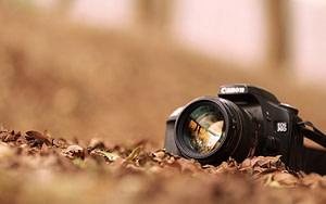 Οι φωτογραφίες αποτελούν σημαντικό κομμάτι της επιτυχίας μια αρχικής σελίδας. Τι γίνεται όμως όταν δεν υπάρχουν προϊόντα να φωτογραφίσεις;